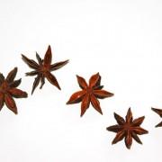 asian-spice-star-anise-