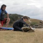 Marine filmmakers throw light on north coast sanctuaries