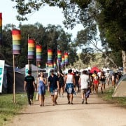 Falls-Festival-Photo-Tree-Faerie-IMG_3808