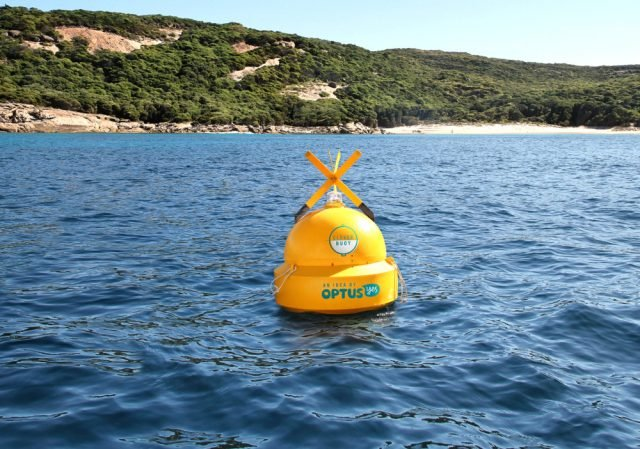 A Clever Buoy in an open ocean trial. Photo Clever Buoy