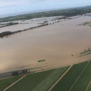 Tweed and Lismore farmers whose properties were devastated by floodwaters, like these ones, are now eligible for grants of up to $10,000 to help them get back on their feet. Photo Tweed Shire Council