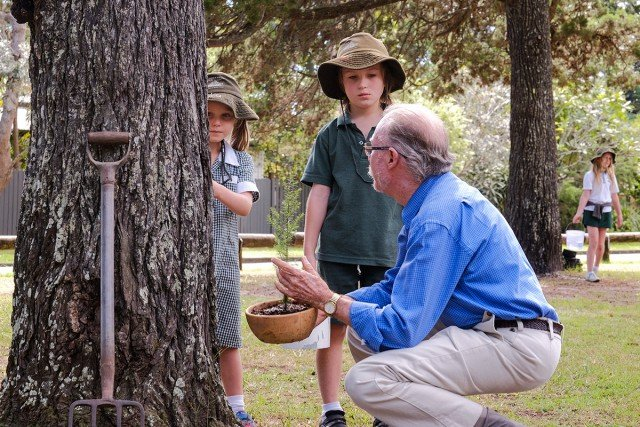 Stella and Spike Dodd hear how their grandfather, Darcey O'meara watered the Norfolk Pines in the Terrace Reserve Caravan Park when he attended Brunswick Heads Primary School. Photo Jeff Dawson