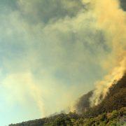 Main-Arm-Fire-Photo-Ghofar-Bourke-IMG_4353