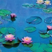 Water-Lilies-of-Monet-A4-Poster