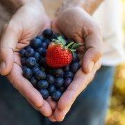 Blueberries-strawberrie–9W6A1782