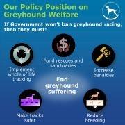 CPG-demands-for-greyhound-welfare