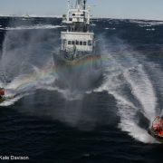Greenpeace-whaling